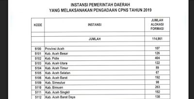 Download Alokasi Formasi CPNS 2019 Tiap Daerah