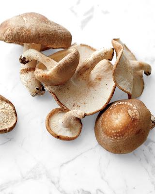 Buy Shittake Mushroom Online