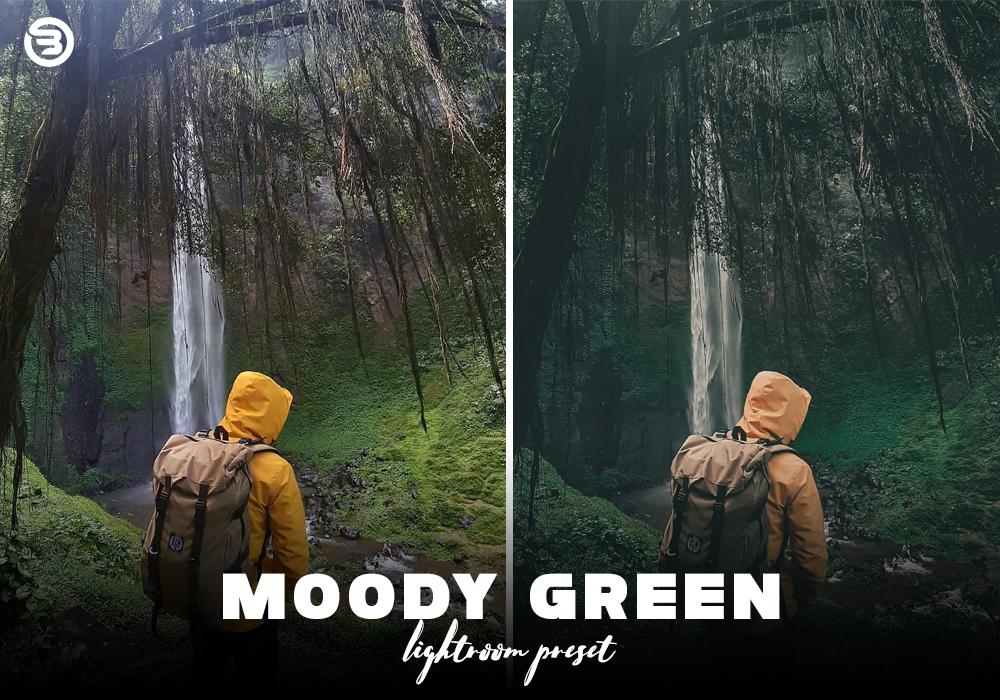 Download Preset MOODY Green Lightroom Mobile