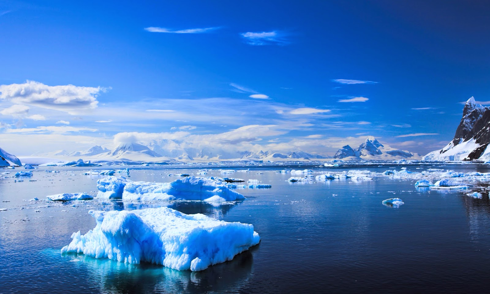 Full Hd Wallpapers For Iphone 4 Antarctica Hd Wallpapers Hd Wallpapers High Definition