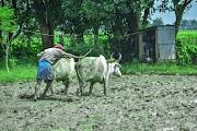 मैं तो सिर्फ कहने के लिए अन्नदाता हूँ | Main To Sirf Kehne Ke Liye Annadata Hun | Short Story In Hindi