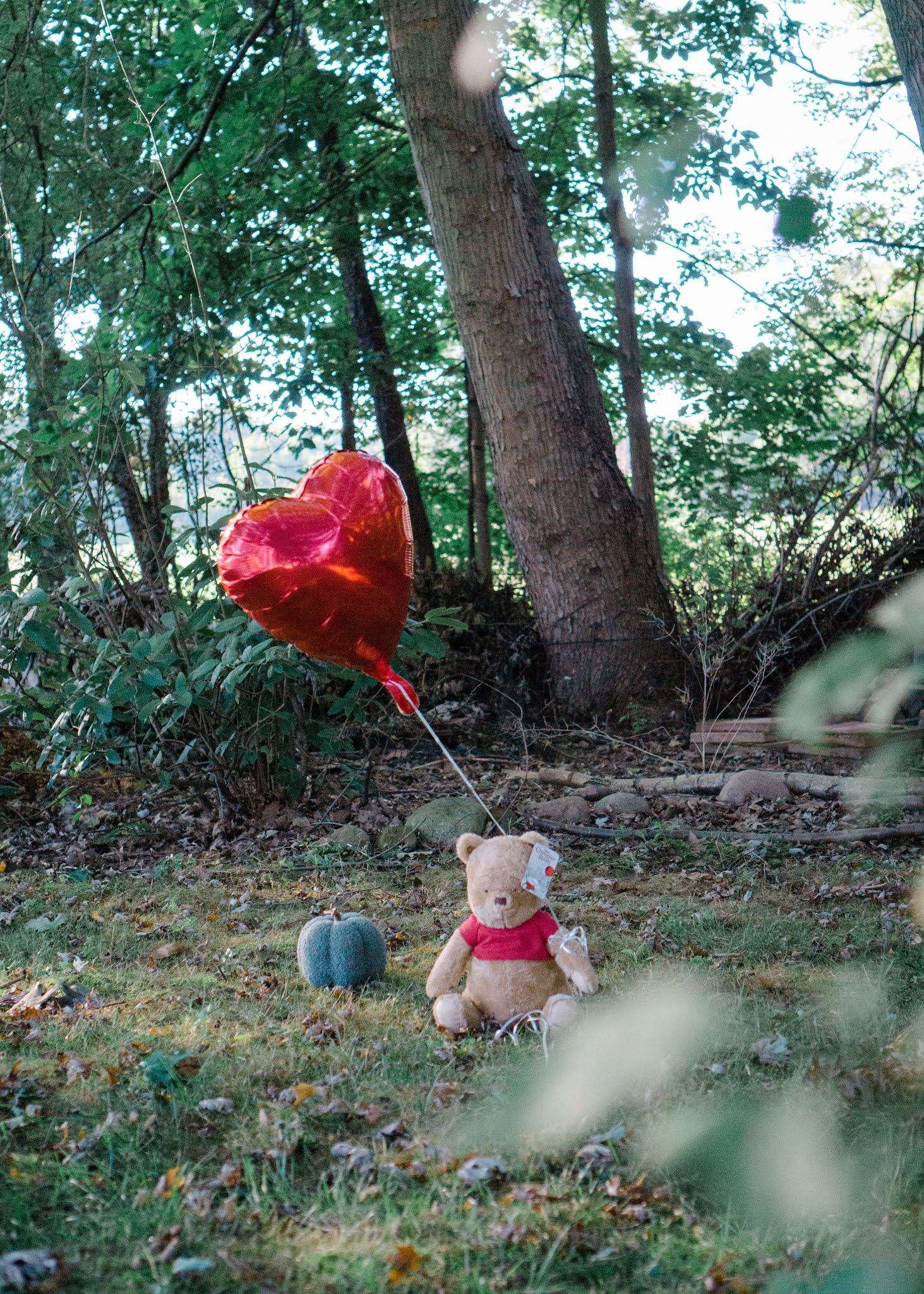 Christopher Robin and Winnie the Pooh Halloween Costumes