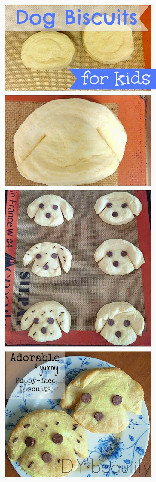 puppy biscuits with chocolate chip faces