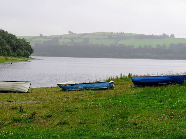 Things to do near Kildare: Blessington Lake