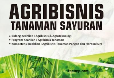 Rpp Agribisnis Tanaman Sayuran Kurikulum 2013 Revisi 2017/2018 dan Rpp 1 Lembar 2019/2020/2021 Kelas XI XII Semester 1 dan 2