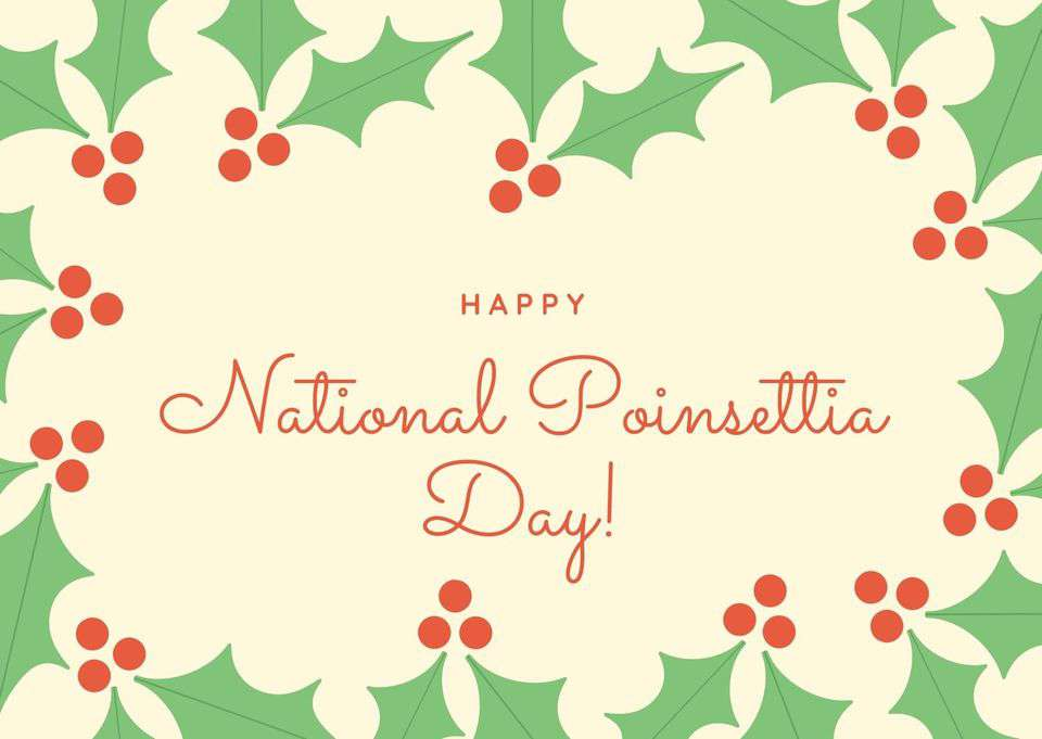National Poinsettia Day Wishes pics free download