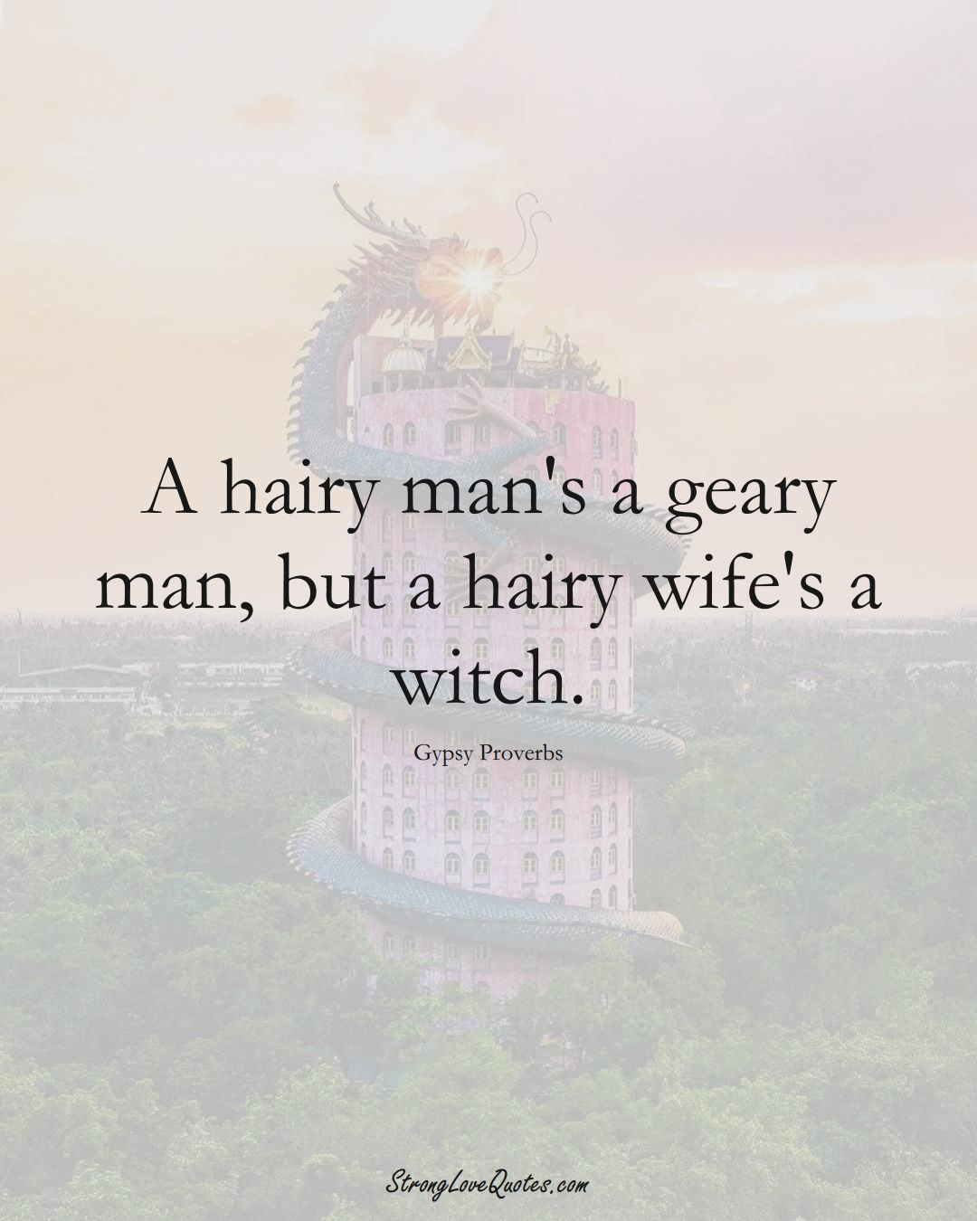 A hairy man's a geary man, but a hairy wife's a witch. (Gypsy Sayings);  #aVarietyofCulturesSayings