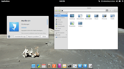 Elementary OS  file manager