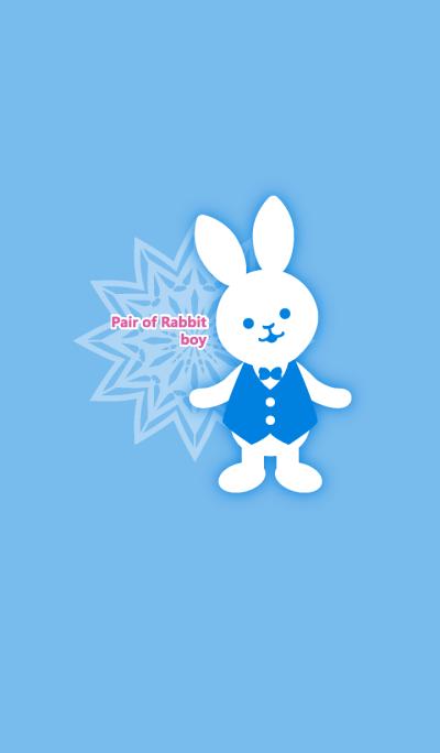 Pair of Rabbit -boy-