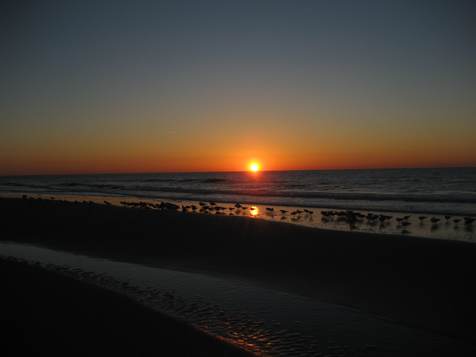 myrtle beach in south carolina overview hits all