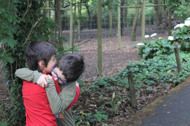 Irmãos a dar um abraço carinhoso, no meio de um parque