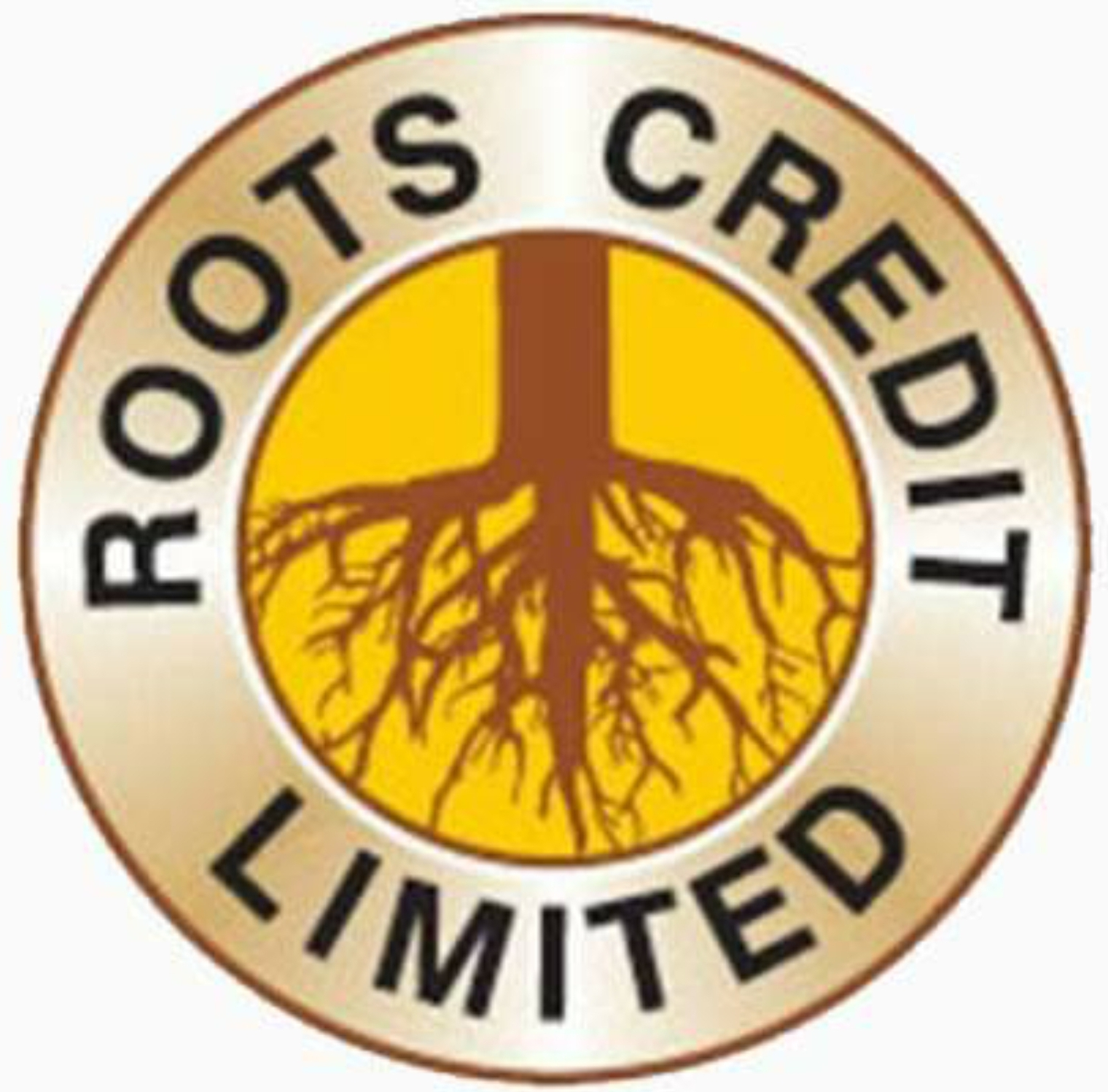 Roots Credit Limited