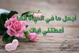 كلام حب ورسائل غرام مكتوبة على صورة تحتوي باقة ورد لونه وردي الى جانب قلب صغير موضوع في الجانب