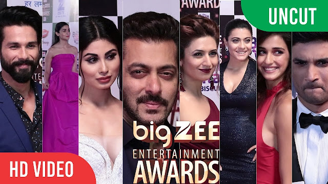 Big Zee Entertainment Awards 2017 Red Carpet