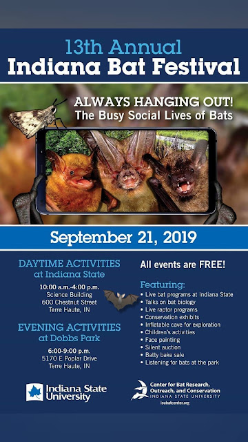Info on Bats | 13th annual Bat Festival set for Sept. 21 at Indiana State University