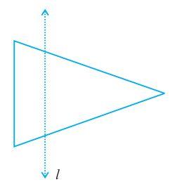 Exercise 13.1 Question 6 Class 6 Maths