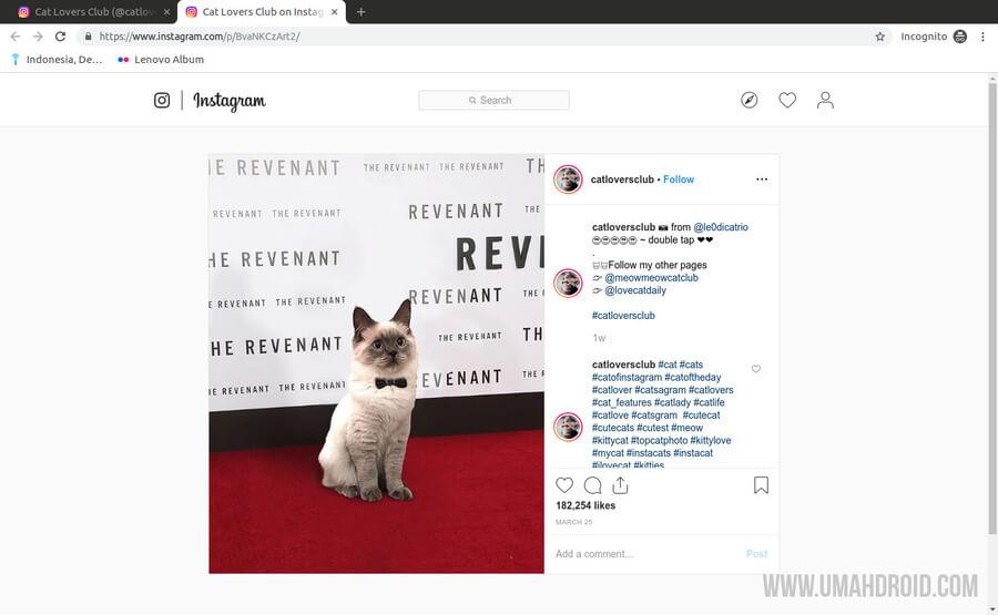 Download Foto Instagram di PC via Chrome dan Firefox