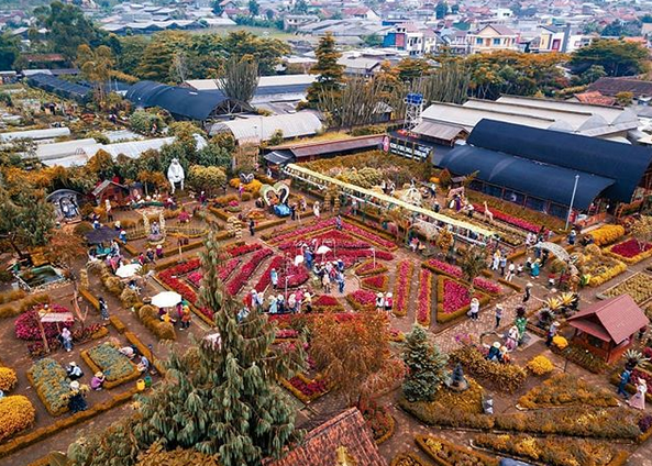 Kebun Begonia Glory, Wisata Hits Jaman Now Kota Lembang