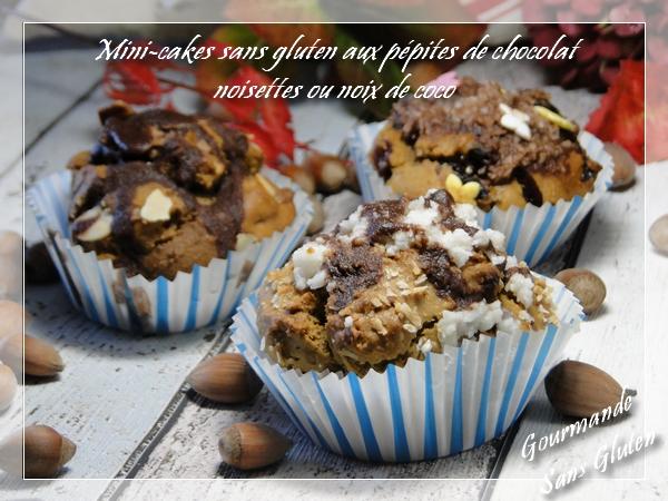 mini cake aux pépites de chocolat, noix de coco ou noisettes