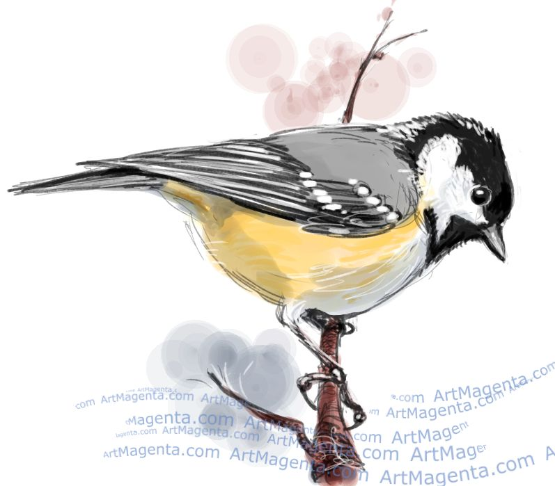 Coal Tit sketch painting. Bird art drawing by illustrator Artmagenta