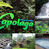 Lokasi, Rute, Fasilitas, dan Nomor Kontak Wisata Alam Capolaga Adventure Camp, Subang
