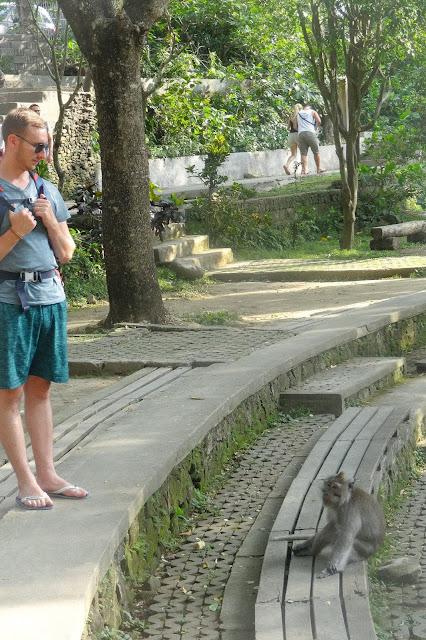 Visite de la forêt des singes d'ubud