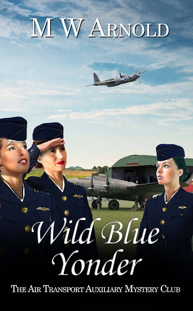 Wild Blue Yonder by M.W. Arnold book review