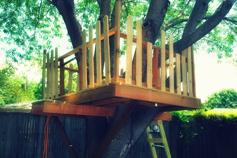 How to build a Treehouse Around a Tree