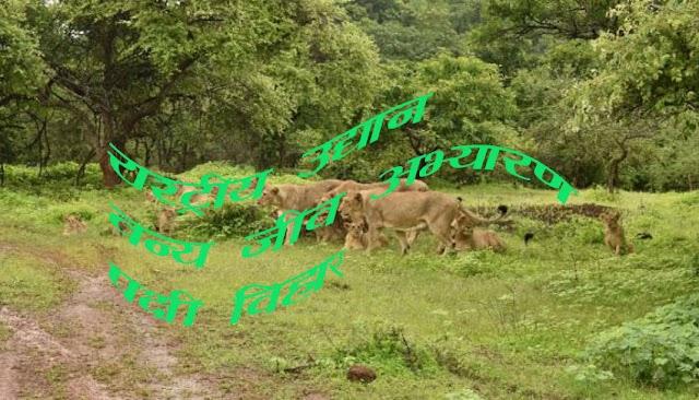 भारत में स्थित राष्ट्रीय उद्यान  वन्य जीव अभ्यारण व पक्षी विहार