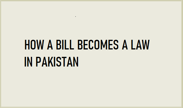 How Pakistan Makes its Laws #Infographic