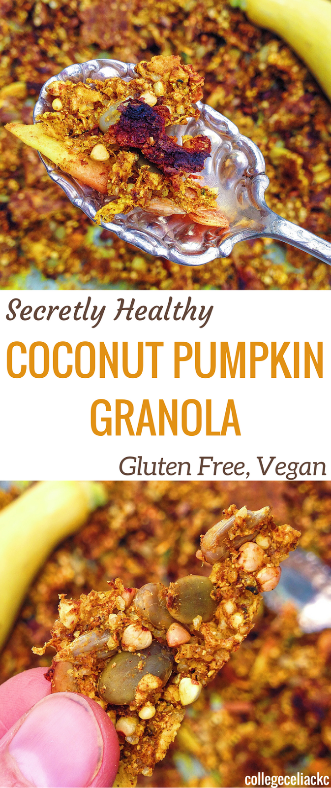 Secretly Healthy Coconut Pumpkin Granola (Gluten Free, Vegan)