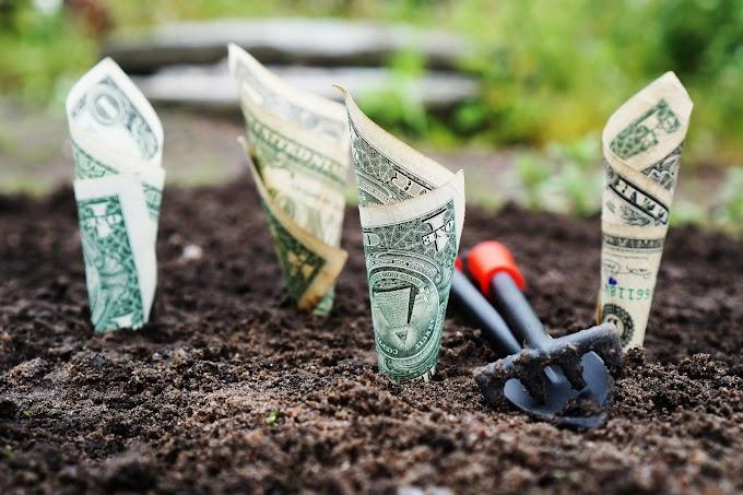 4 Best High-Yield Savings Accounts of USA
