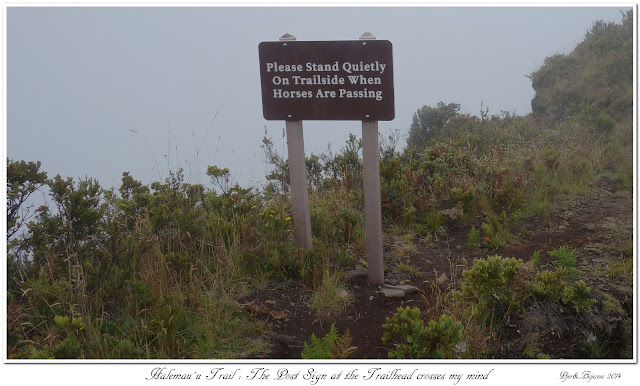 Halemau'u Trail: The Post Sign at the Trailhead crosses my mind