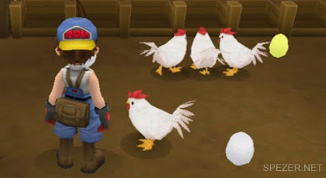 Ayam di Harvest Moon HoLV