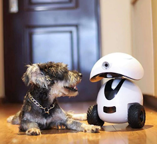 DOGNESS Smart IPet Robot Toy APP Remote Control HD Video Monitor Your Pet for Dogs and Cats - White US Plug (2-pin)