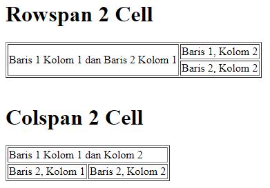 Rowspan dan Collspan pada tabel HTML