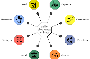 Organizational Effectiveness, Agility and Resilience