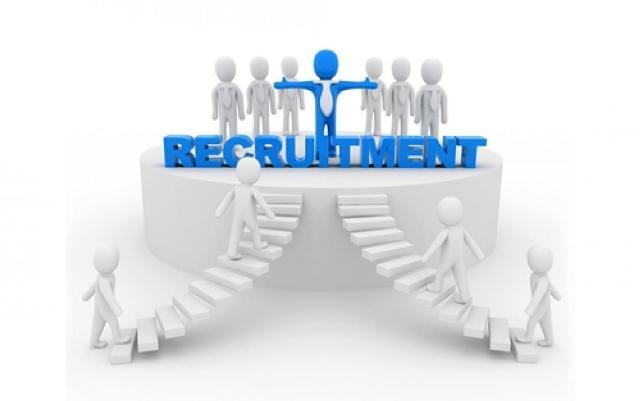 Rekrut Tenaga Kontrak, Kuota Hanya 350 Pelamar Capai 1000 Orang