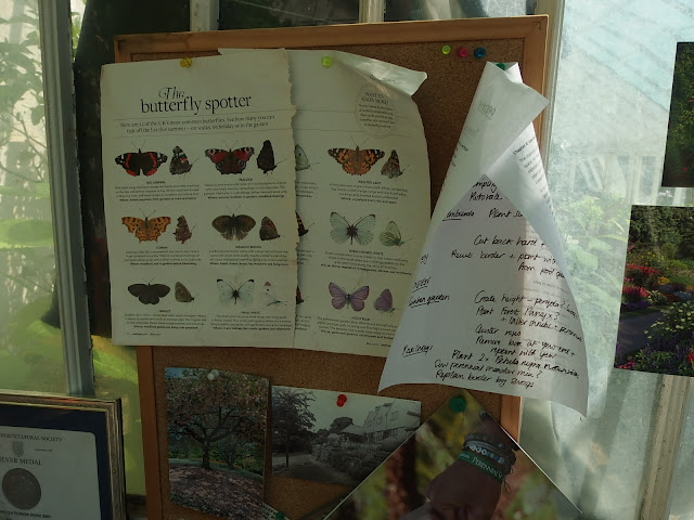 A quick butterfly ID guide found on the greenhouse notice board
