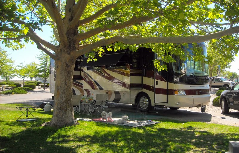 Have Retirement Will Travel American Rv Park And