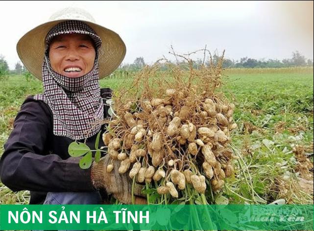 Nông sản Hà Tĩnh