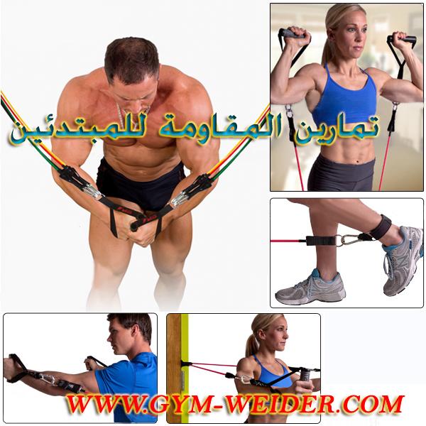 Gym Weider جدول متكامل للمبتدئين في تمارين المقاومة