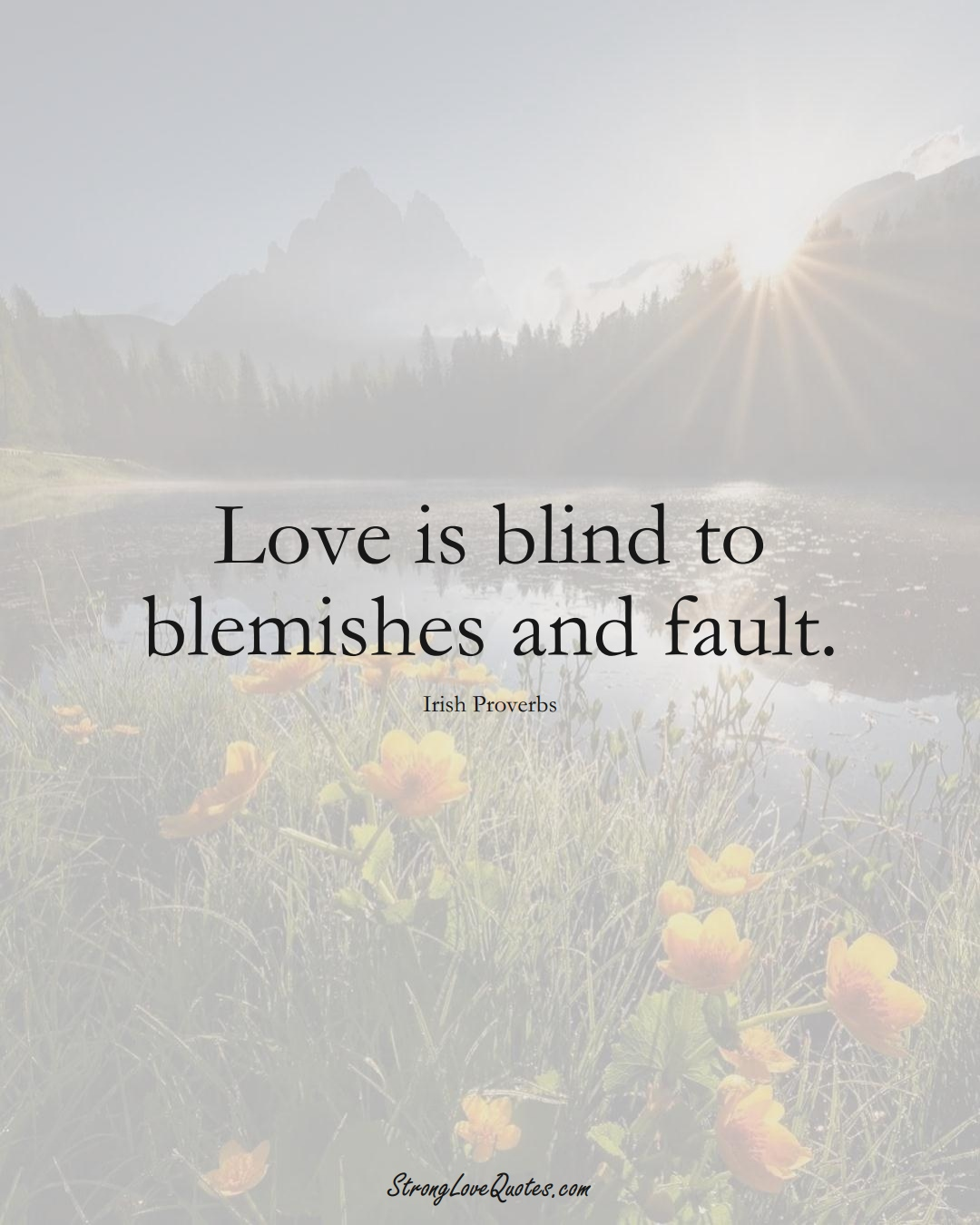 Love is blind to blemishes and fault. (Irish Sayings);  #EuropeanSayings