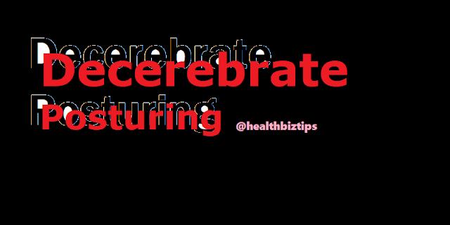 What is decerebrate posturing? | Healthbiztips