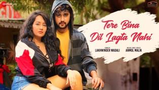 Tere Bina Dil Lagta Nahin Lyrics - Lakhwinder Wadali