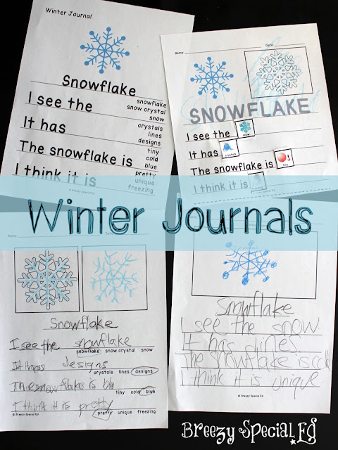 Winter Themed LA, Math, and Crafts: Lessons for Special Education ...
