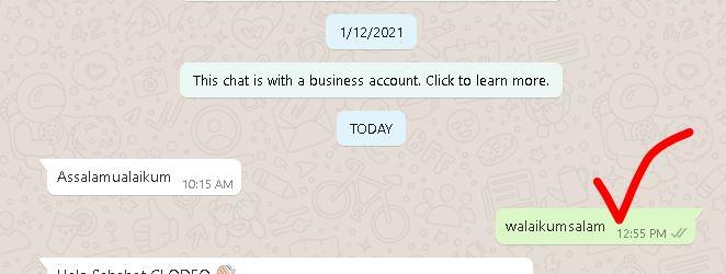 balas chat WA