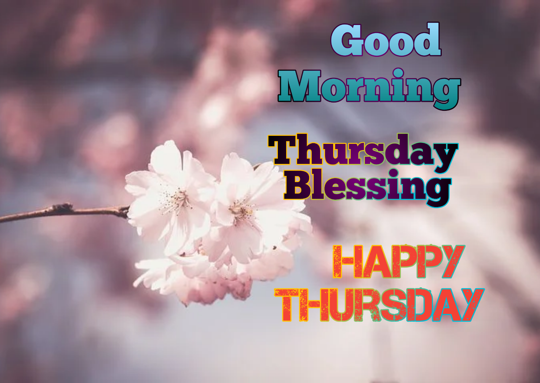 Happy Thursday Images, Wishes, Wallpaper, Quotes, For Whatsapp, Facebook,