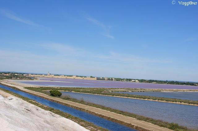 Panorama sulle saline di Aigues Mortes dalla Camelle
