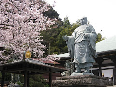 長勝寺の桜